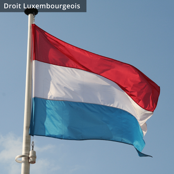 grisbee_images_placements_droitluxembourgeois